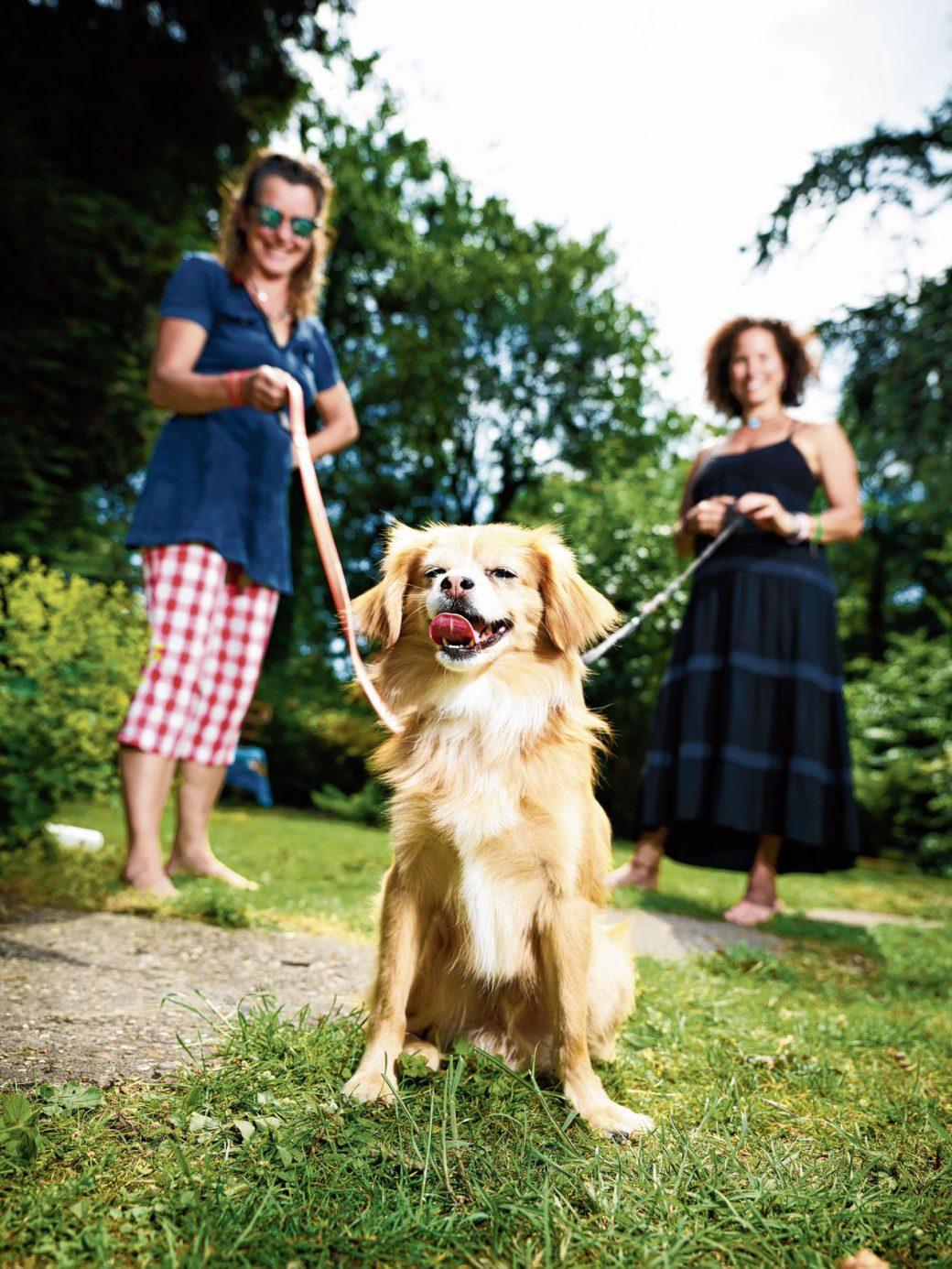 Mayra Figueroa (49) (links), Else Zwart (54) en hondBailey (4)uit Amsterdam.Foto's Merlijn Doomernik